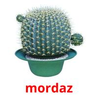 mordaz picture flashcards