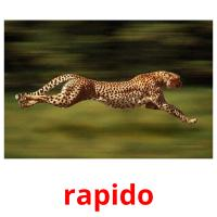rapido picture flashcards
