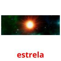 estrela picture flashcards
