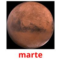 marte picture flashcards