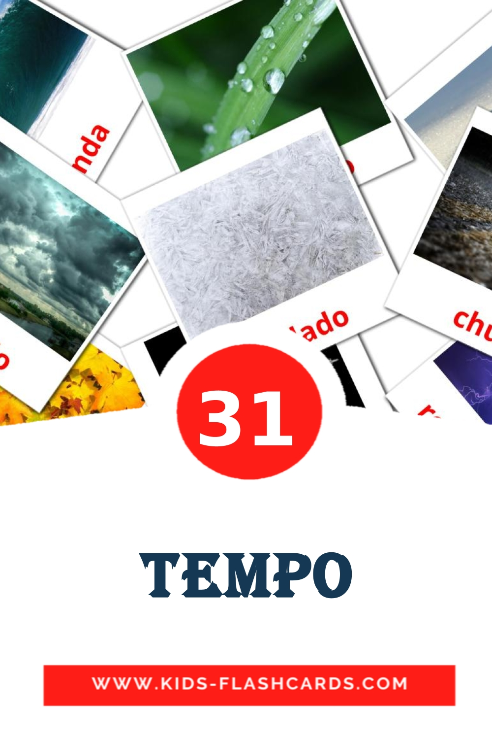 31 Tempo Picture Cards for Kindergarden in portuguese