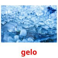 gelo picture flashcards
