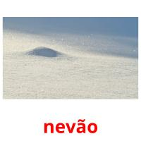 nevão picture flashcards