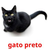 gato preto card for translate
