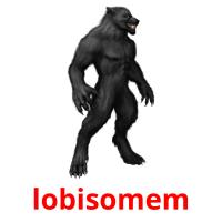 lobisomem picture flashcards