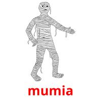 mumia picture flashcards