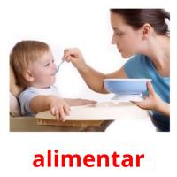 alimentar picture flashcards