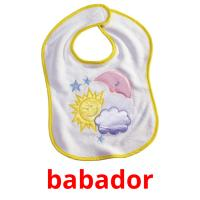 babador picture flashcards