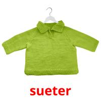 sueter picture flashcards