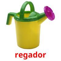 regador picture flashcards