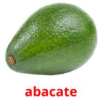 abacate picture flashcards