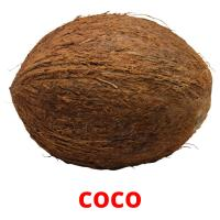 coco picture flashcards