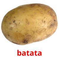 batata picture flashcards