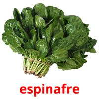 espinafre picture flashcards