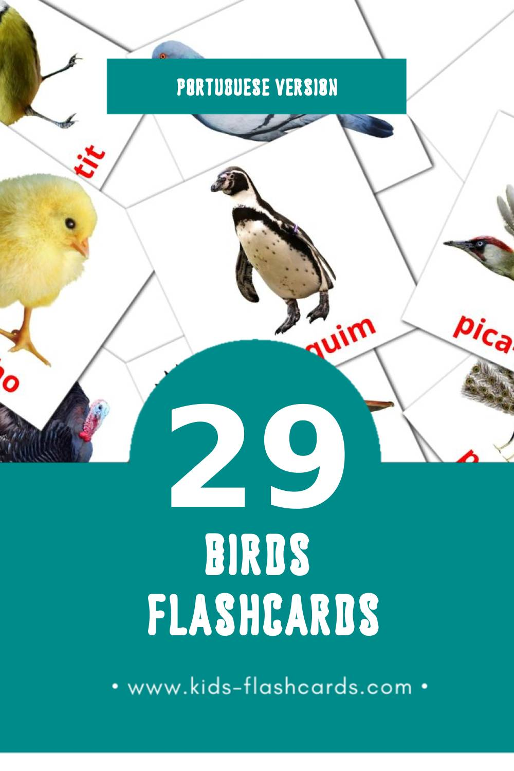 Visual Aves Flashcards for Toddlers (29 cards in Portuguese)