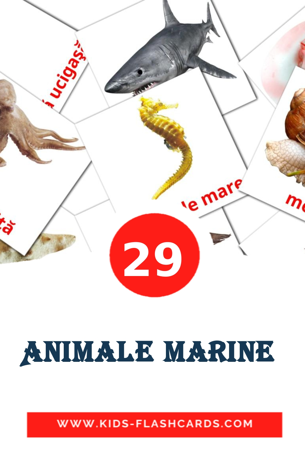 23 Animale marine  Picture Cards for Kindergarden in romanian