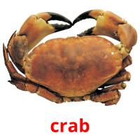 crab picture flashcards