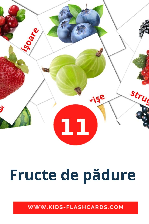 11 Fructe de pădure  Picture Cards for Kindergarden in romanian