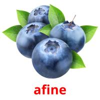 afine picture flashcards