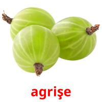 agrişe picture flashcards