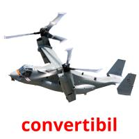 convertibil picture flashcards