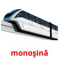 monoşină picture flashcards