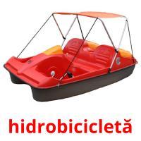 hidrobicicletă picture flashcards