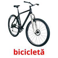 bicicletă picture flashcards