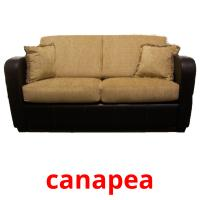 canapea picture flashcards