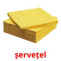 șervețel picture flashcards