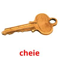 cheie picture flashcards