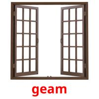 geam picture flashcards