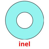 inel picture flashcards