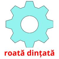 roată dințată picture flashcards