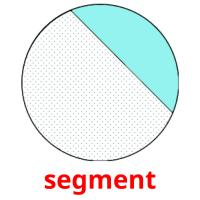 segment picture flashcards