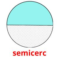 semicerc picture flashcards