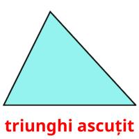 triunghi ascuțit picture flashcards