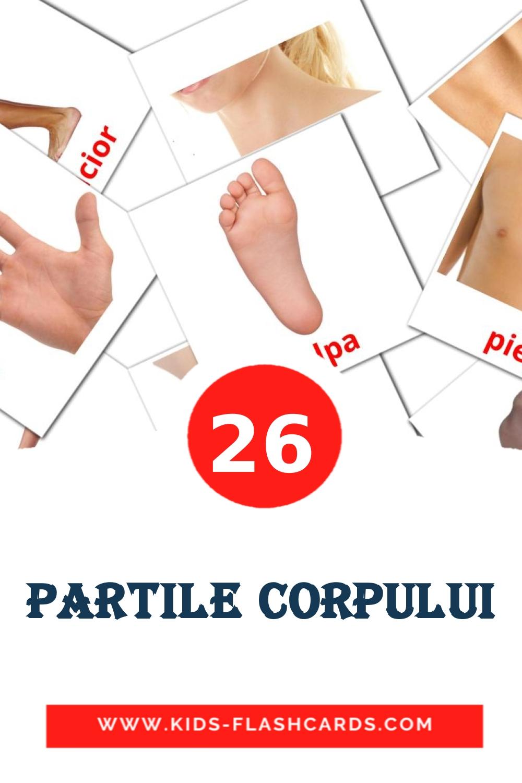 26 Partile corpului Picture Cards for Kindergarden in romanian