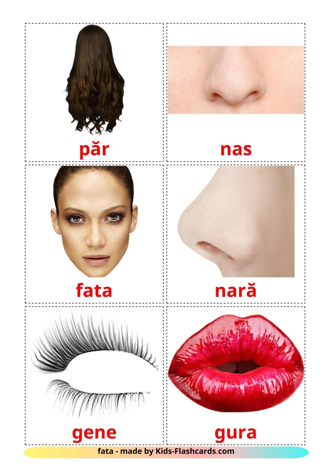 Face - 20 Free Printable romanian Flashcards