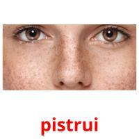 pistrui picture flashcards