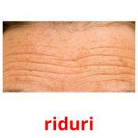 riduri picture flashcards