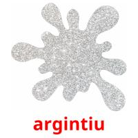 argintiu picture flashcards