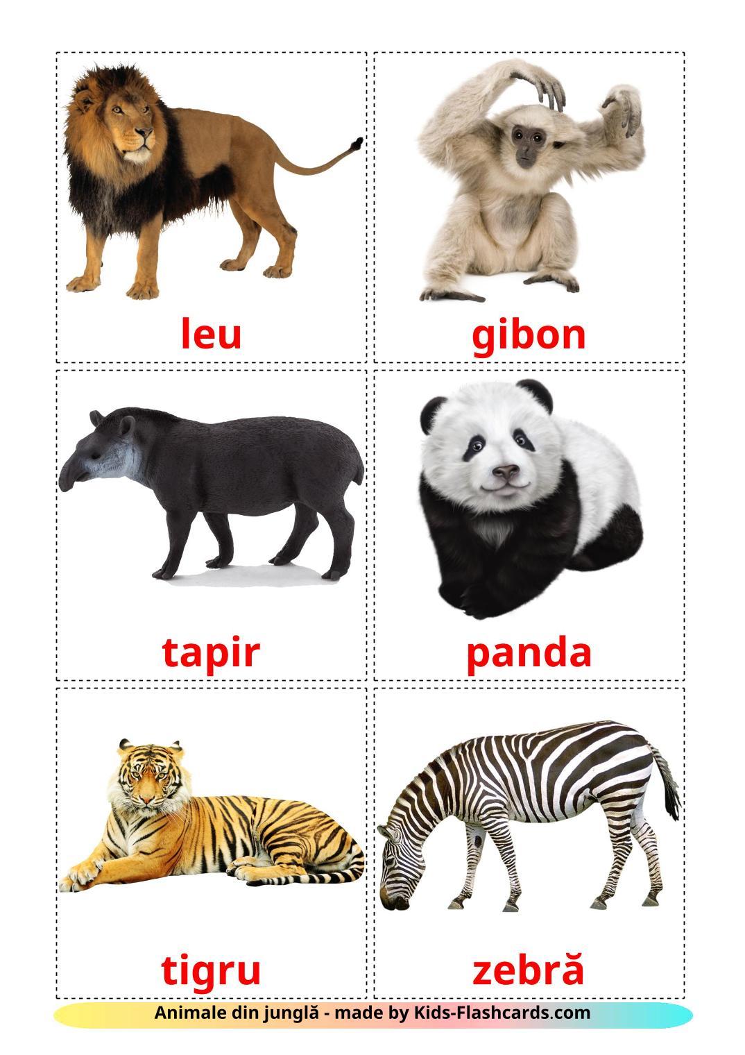 Jungle animals - 21 Free Printable romanian Flashcards