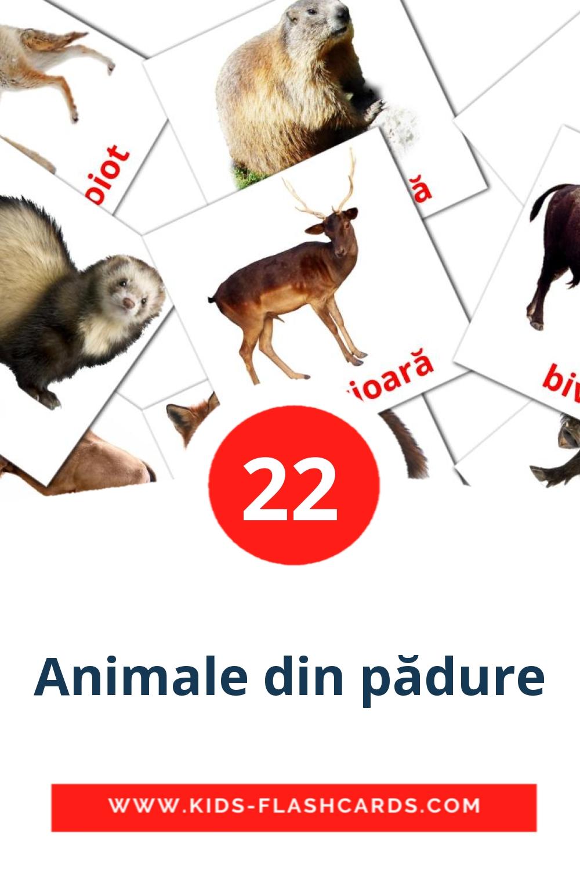 22 Animale din pădure Picture Cards for Kindergarden in romanian