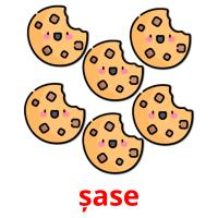 șase picture flashcards