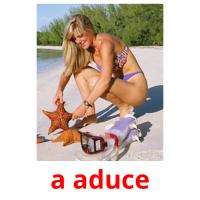 a aduce picture flashcards