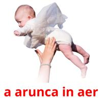 a arunca in aer picture flashcards
