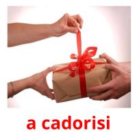 a cadorisi picture flashcards
