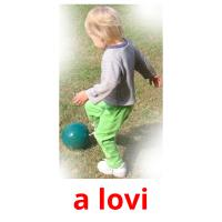 a lovi picture flashcards