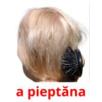 a pieptăna picture flashcards